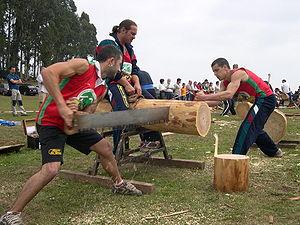 Woodsman - Crosscut sawing, Asturias, Spain, 2007