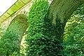Crawfordsburn viaduct (summer) - geograph.org.uk - 1366222.jpg
