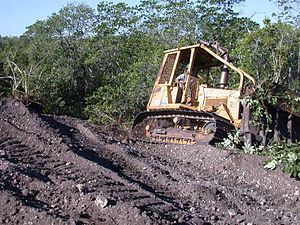 Crocodile Lake National Wildlife Refuge - Image: Creating Nesting Sites For Crocodiles