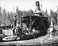 Crew with donkey engine, camp 6, Puget Sound Mill and Timber Company, near Twin, ca 1922 (KINSEY 1271).jpeg