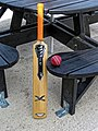 Cricket bat and ball at Bishop's Stortford Cricket Club, Hertfordshire.jpg