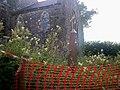 Crunwere Church, Llanteg - geograph.org.uk - 1427136.jpg