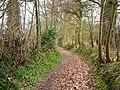 Cumbers Lane, near Borden - geograph.org.uk - 708605.jpg