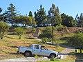 Curico, bajada-subida cerro Condell (12939896433).jpg