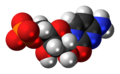 Cytidine monophosphate anion 3D spacefill.png