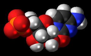 Cytidine monophosphate - Image: Cytidine monophosphate anion 3D spacefill