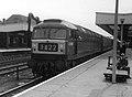 D1982 Doncaster (3048882362).jpg