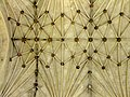 DSCF0569, UK, Ely, Cathedral, Lady Chapel, Ceiling.jpg