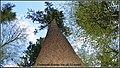 Danmarks højeste træ - panoramio.jpg