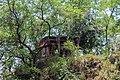 Davis Fall, Pokhara (ID NP-KAS-02) (14).jpg