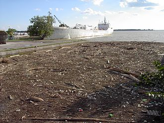 Keating Channel - Debris collected at mouth of the Keating Channel after a storm in August 2005