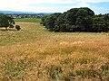 Deipkier - geograph.org.uk - 45973.jpg