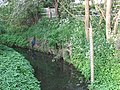 Depth board on the Small River Lea, Cheshunt - geograph.org.uk - 1328483.jpg