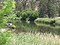 Deschutes River at Cline Falls State Park, Oregon.JPG
