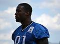 Detroit Lions receiver Calvin Johnson in 2012.jpg