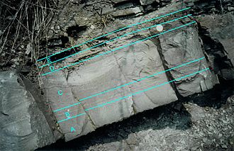 Turbidite - Complete Bouma sequence in Devonian Sandstone (Becke-Oese, Germany)
