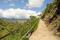Diamond Head Hike (3) (13).jpg