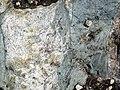 Dike intruding tillite (Nipissing Diabase & Gowganda Formation, Paleoproterozoic; Percival Lake roadcut, Ontario, Canada) 10 (47674714572).jpg