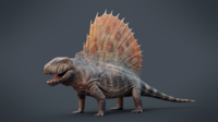 Dimetrodon grandis 3D Model Reconstruction.png