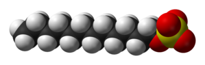 Space-filling model of the dodecyl sulfate ion