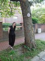 Doily tree tagging (9247210458).jpg