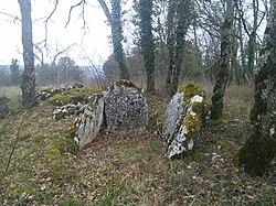 Dolmen de Cartayroux .jpg