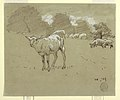 Drawing, Sheep Grazing in a Field, ca. 1875–78 (CH 18175177).jpg