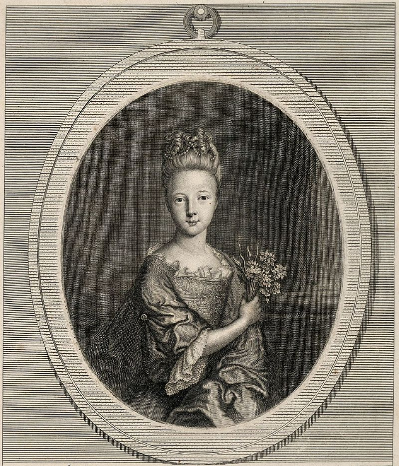 Рисунок герцогини Ла Vallière.jpg