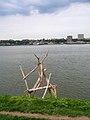 Driftwood3 (143649656).jpg