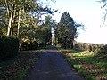 Driveway past Town Farm - geograph.org.uk - 83653.jpg