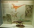 Dromaeosaurier, Senckenberg, 2017-10-12.jpg