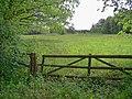Duvenstedter brook langenhorstwiesen 1.jpg