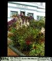 ETH-BIB-Las Palmas (Gran Canaria), Garten Hôtel Atlantic-Dia 247-07422.tif
