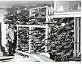 East Coast Fisheries Freezing Room, 1966.jpg