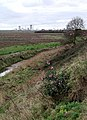 East of Hull - geograph.org.uk - 303535.jpg