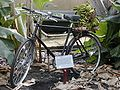 Eden Banana Bike.jpg