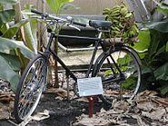 Eden Banana Bike