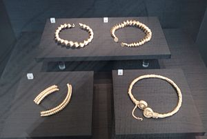 Blair Drummond - Four Iron Age torcs found in Blair Drummond in September 2009 and now in the Museum of Scotland.