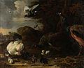 Een hen met kuikens bedreigd door twee pauwen, bekend als 'De bedreigde hen' Rijksmuseum SK-A-174.jpeg