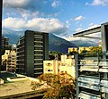 El Bosque Caracas.jpg