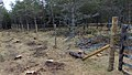 Electric Fence (Glen Lui) on Mar Lodge Estate (15MAR13) (19).jpg