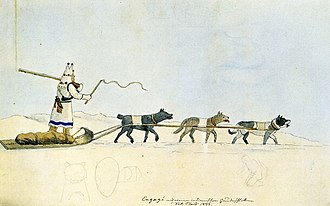 Sled dog - Sled dog types, sketched in 1833