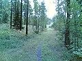 Entinen Viikintie - panoramio.jpg