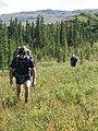 Erik and Brett hike over marshy tundra (6795727938).jpg