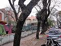 Escuela Brasil Anexo Demolicion 04.jpg