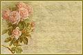Every Flower 4x6 notecard.jpg