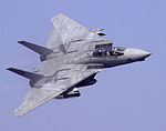 F-14D VF-31 Abraham Lincoln Flyby (2002).jpeg