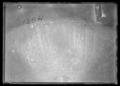 Falkernerarpuka av brons, syrisk-egyptisk, ca 1300, äldsta bevarade exemplaret - Livrustkammaren - 344.tif