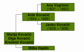 Ante Kovačić - Family tree of Ante Kovačić