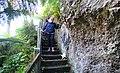 Fernery, Gyllyngdune Gardens, Falmouth, Cornwall.jpg
